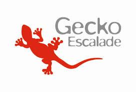 Gecko Escalade Sottens